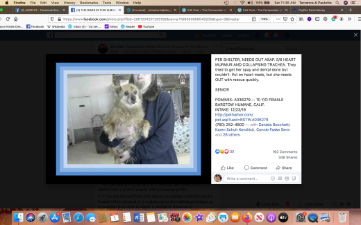 POM MIX A036279 Screen Shot 2020-02-01 at 11.36.54 AM